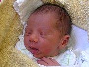 Sebastián Miko se narodil Andree Mikové a Pavlovi Tulia z Jablonce nad Nisou 15. 3. 2016. Měřil 45 cm a vážil 2460 g.