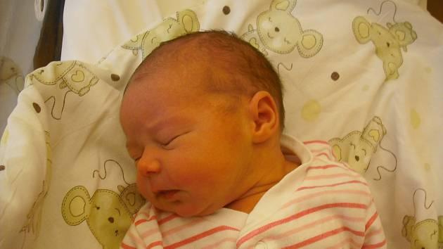 Sofie Marie Fleknová. Narodila se 15. listopadu mamince Oksaně Fleknové ze Semil. Vážila 3,30 kg a měřila 50 cm.