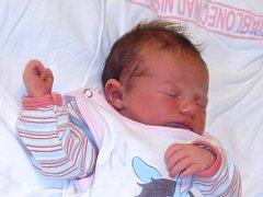 Tereza Štejfová se narodila Kateřině Štejfové z Kořenova 17. prosince 2013. Měřila 45 cm, vážila 3050 g.