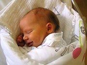 Berenika Bursová se narodila Vlaďce a Mílovi Bursovým ze Železného Brodu 11. 4. 2016. Měřila 47 cm a vážila 2920 g.