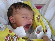 Barborka Petrová se narodila Nikole Petrové a Michalovi Mizerovi z Jablonce nad Nisou 3.2.2015. Měřila 46 cm a vážila 2490 g.