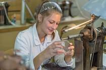 Ve škole nabízejí tyto obory: Malba a dekor Hutní tvarování skla - Ryté a reliéfní sklo - Design šperku, bižuterie a módních doplňků - Broušení a tavená plastika - Design technickodekorativního skla a skleněných figurek.