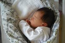 Eliška Pluhařová Narodila se 8.března v jablonecké porodnici mamince Pavlíně Pluhařové z Českého Dubu.Vážila 2,71kg a měřila 45 cm.
