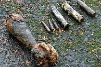 Policejní potapěči vytáhli z jablonecké přehrady nebezpečnou munici.