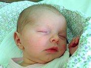 SÁRA LOUKOTOVÁ se narodila Veronice a Michalovi Loukotovým z Turnova dne 28.12.2016. Měřila 49 cm a vážila 2640 g.