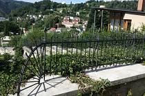 Kovaný plot na hřbitovní zdi v Železném Brodě.
