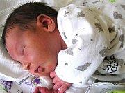 Oliver Vitvar se narodil Anně Vitvarové a Františkovi Makulovi z Tanvaldu 26. 1. 2016. Měřil 46 cm a vážil 2950 g.