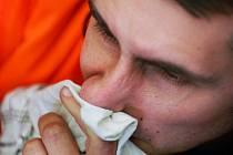 Pylová alergie trápí lidi většinou v letních měsících, ta chronická však po celý rok