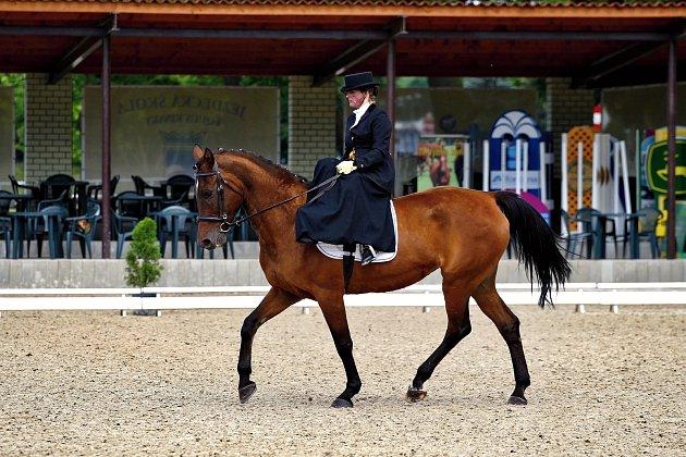 Markéta Slavíková se věnuje méně obvyklé disciplíně Dámské sedlo (sed na koni bokem), sbírá úspěchy na soutěžích a připravuje se na Mistrovství Polska.