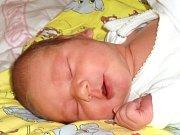 Simona Perknerová se narodila Libuši Perknerové a Miroslavu Volavkovi z Jablonce nad Nisou 1. 10. 2014. Měřila 51 cm, vážila 3600 g.