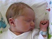 Isabel Prošková se narodila Radce H. a Janovi Proškovým z Jablonce nad Nisou 7.9.2016. Měřila 49 cm a vážila 3140 g