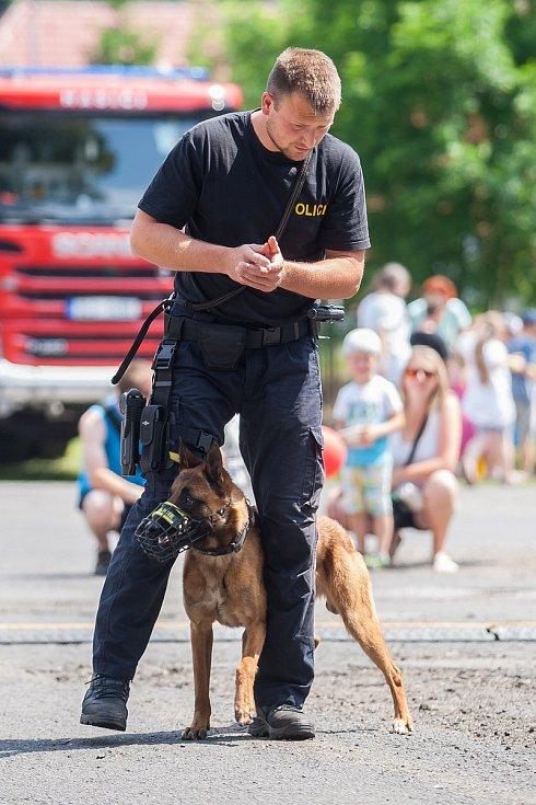 Tradiční Rychnovské slavnosti proběhly 26. května v Rychnově u Jablonce nad Nisou. Na snímku je kynologická ukázka Policie České republiky.