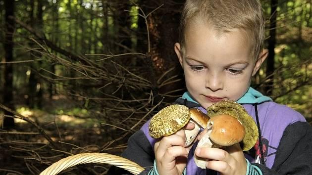Čtyřletý Ondra se těší se svého houbařského úlovku