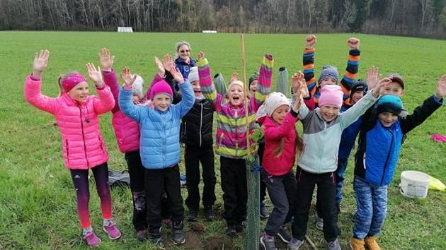Děti sázely stromky z Koberov na Malou Skálu.
