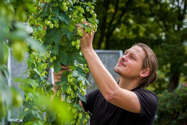 Martin Palouš, sládek pivovaru Volt vJablonci nad Nisou.
