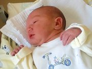 Martin Rokos se narodil Michaele Ilčíkové a Martinovi Rokosovi z Varnsdorfu 4. 11. 2014. Vážil 3250 g a měřil 49 cm.