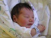 Šimon Vrba se narodil Šárce Pavienské a Jakubovi Vrbovi z  Jablonce nad Nisou 20. 4. 2016. Měřil 47 cm a vážil 2970 g.