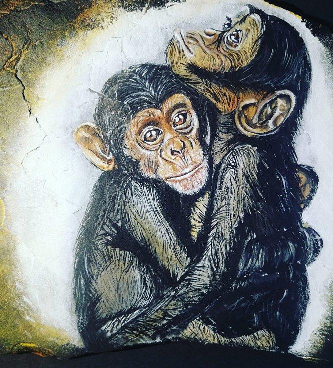 Blanka Trávníčková věnovala kamínek s objetím šimpanzů Vydražil se za 1200 korun pro ZOO na Hrádečku.