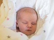 ROZÁRKA HOLUBCOVÁ se narodila v sobotu 22. července mamince Elišce Holubcové z Jablonce nad Nisou. Měřila 49 cm a vážila 3,46 kg.