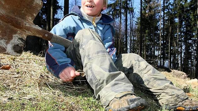 Tři druhy třešňových stromů vysázeli v sobotu děti a jejich rodiče na cestě z Nové Vsi nad Nisou na Černou Studnici.