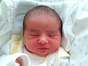 JOHANKA PETRŮJOVÁ se narodila Zuzaně a Standovi z Hrádku nad Nisou dne 20.12.2016. Měřila 49 cm a vážila 3500 g.