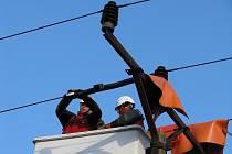 Na sloupy vysokého napětí instalují energetici takzvané ptákosedy, které zabrání jejich poranění, když si sednou na sloup.