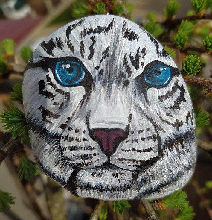 Bílý tygr je v aukci pro libovolnou zoo do 14. dubna.
