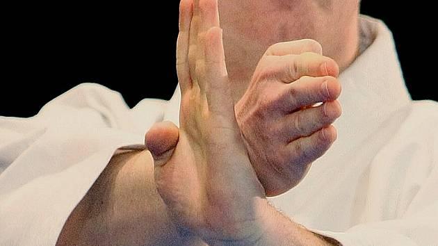 Karate. Ilustrační snímek.