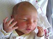 Natálka Horvátová se narodila Lucii Poloprudské a Davidovi Horvátovi z Jistebska 23.8.2016. Měřila 48 cm a vážila 3140 g