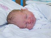 František Diviš se narodil v pondělí 13. února Petrovi a Daniele Divišovým. Měřil 48 centimetrů a vážil 3 350 g.