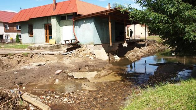 Olszyna po povodni.