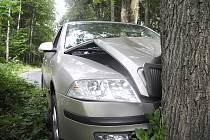 Srnku řidič Octavie u Rychnova nesrazil, skončil ale s vozem ve stromě.