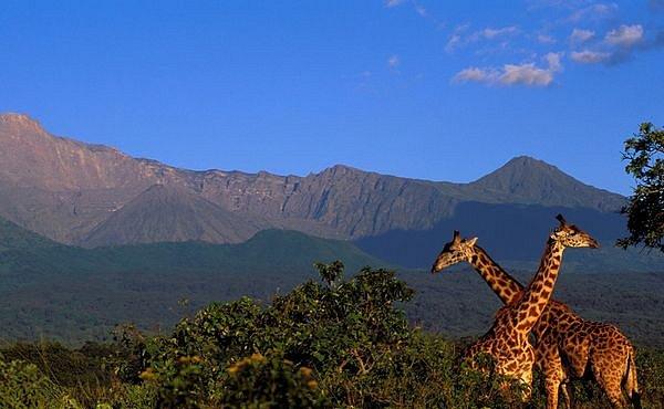 Fotoexpedice Afrika – před startem