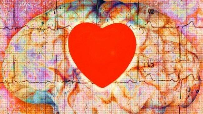 Chemie lásky. Co se s námi děje, když jsme zamilovaní?