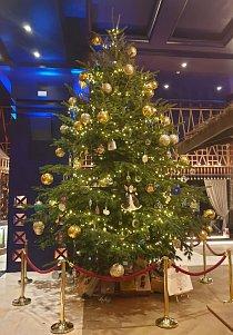 Nejdražší vánoční strom na světě byl odhalen v hotelu Kempinski Bahia v Marbelle ve Španělsku....