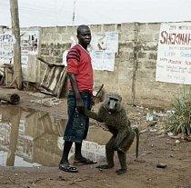 Umoru Murtala s opicí School Boy, Asaba, Nigérie 2007.