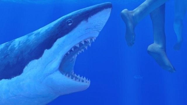 Nejhorší lidožrouti v dějinách: Čelisti. Žralok, který způsobil paniku po celém kontinentu