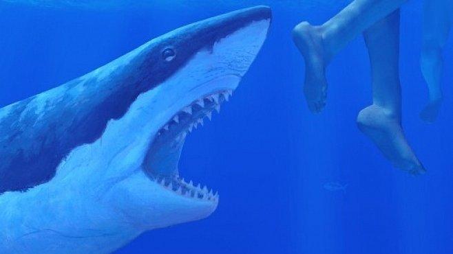 ef22e09ab6a Nejhorší lidožrouti v dějinách  Čelisti. Žralok