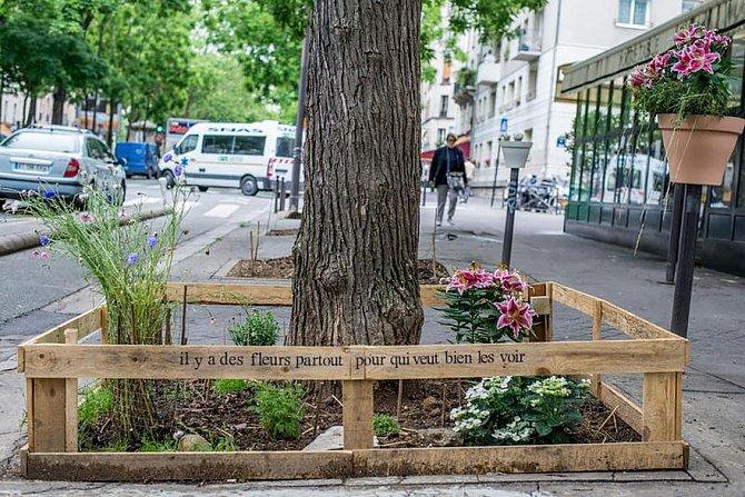 Pařížská radnice se rozhodla udělat změsta nad Seinou zelenou metropoli.