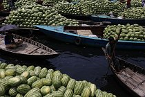 Melounová sezóna v Bangladéši vrcholí.