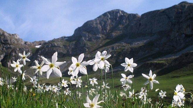 Kvetoucím Balkánem aneb jarní toulky Černou Horou, Bosnou a Hercegovinou