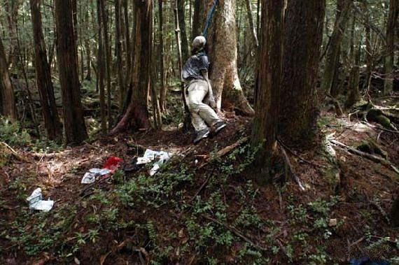 Podobných fotografií z lesa Aokigahara je spousta. My sem dáváme jen jednu.