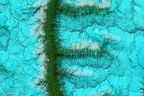 Písmeno F – Údolí a horské hřebeny V jihovýchodním Tibetu pokryté sněhem