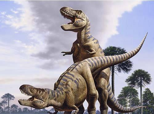 Tajemství dinosauřího sexu: jak to dělali?