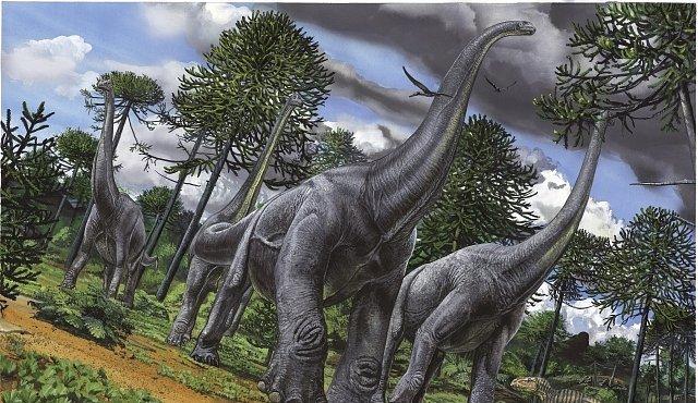 Dinosaurier Arten Steckbriefe