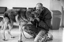 I přes velkou bolest se Bar vrátil do veterinární nemocnice, ve které byl Milky ošetřován. Procházel se chodbami a mluvil s majiteli zvířat.