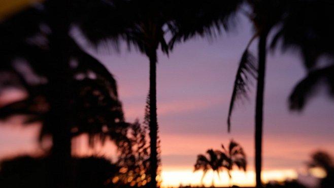 Náš člověk na Havaji: Jak jsem přišla do ráje