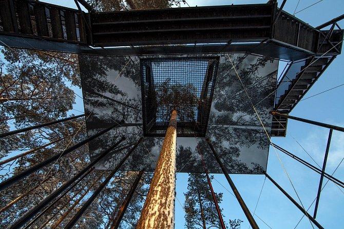 Kolem kmene borovice je terasa, která dává možnost sledovat hvězdy.