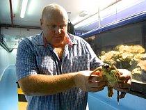 Angličan Warren R. Baverstock už více než deset let zachraňuje nemocné korytnatce