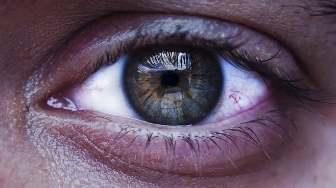 Oční léky z vraku lodi jsou staré 2 000 let. Jsou důkazem vyspělosti starověkého lékařství